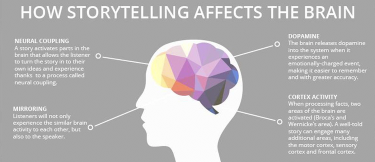 how storytelling affect the brain