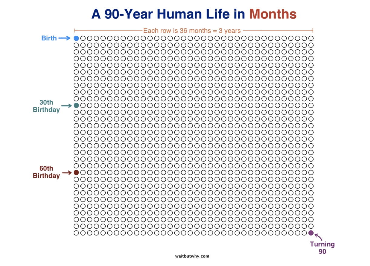 90 year human life in months