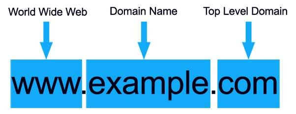 SEO for real estate domain example