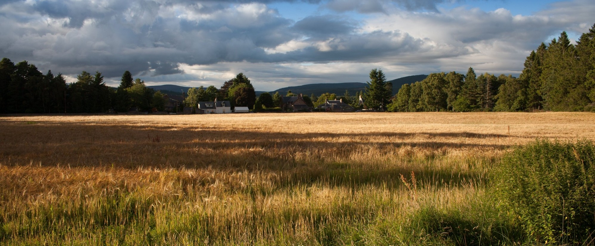 owner financing on land in Washington, Idaho, Oregon, Montana -  and surrounding cities
