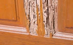 how to sell a house with termites in oklahoma city