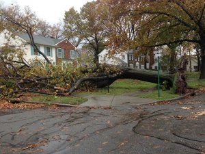 Hurricane Sandy Damage - Knowing when to cut your losses