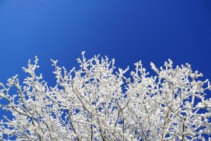 winter home maintenance tips for remote homes
