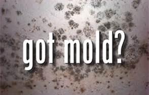 got-mold