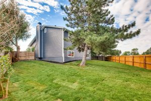 Tips to Make Your Yard a Selling Point in Aurora