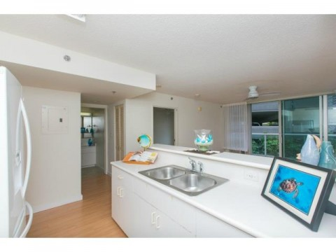 1448 Young Street 406 - Honolulu Condo