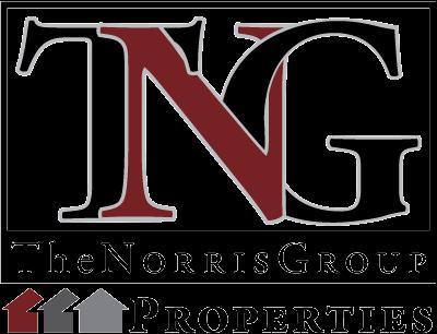 TNG Properties  logo