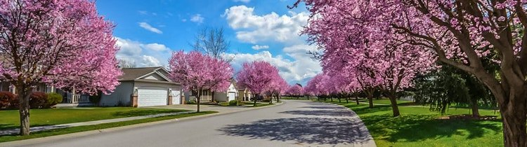 Reasons to Buy a Home in Garner in the Spring