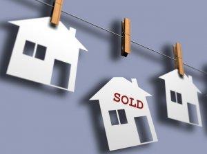estate investor