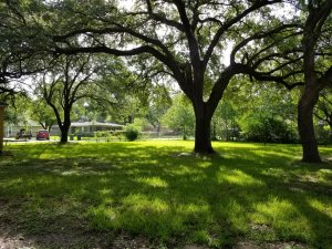 Homes For Sale In TX La Marque 77568 – Holly 2BR Backyard 2