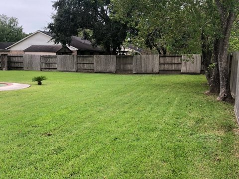 Homes For Sale In TX Friendswood 77546 – Killarney 3BR Backyard