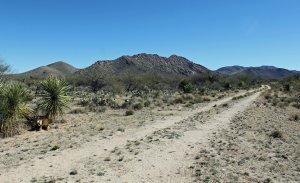 We Buy Land in Diamond Bell Ranch