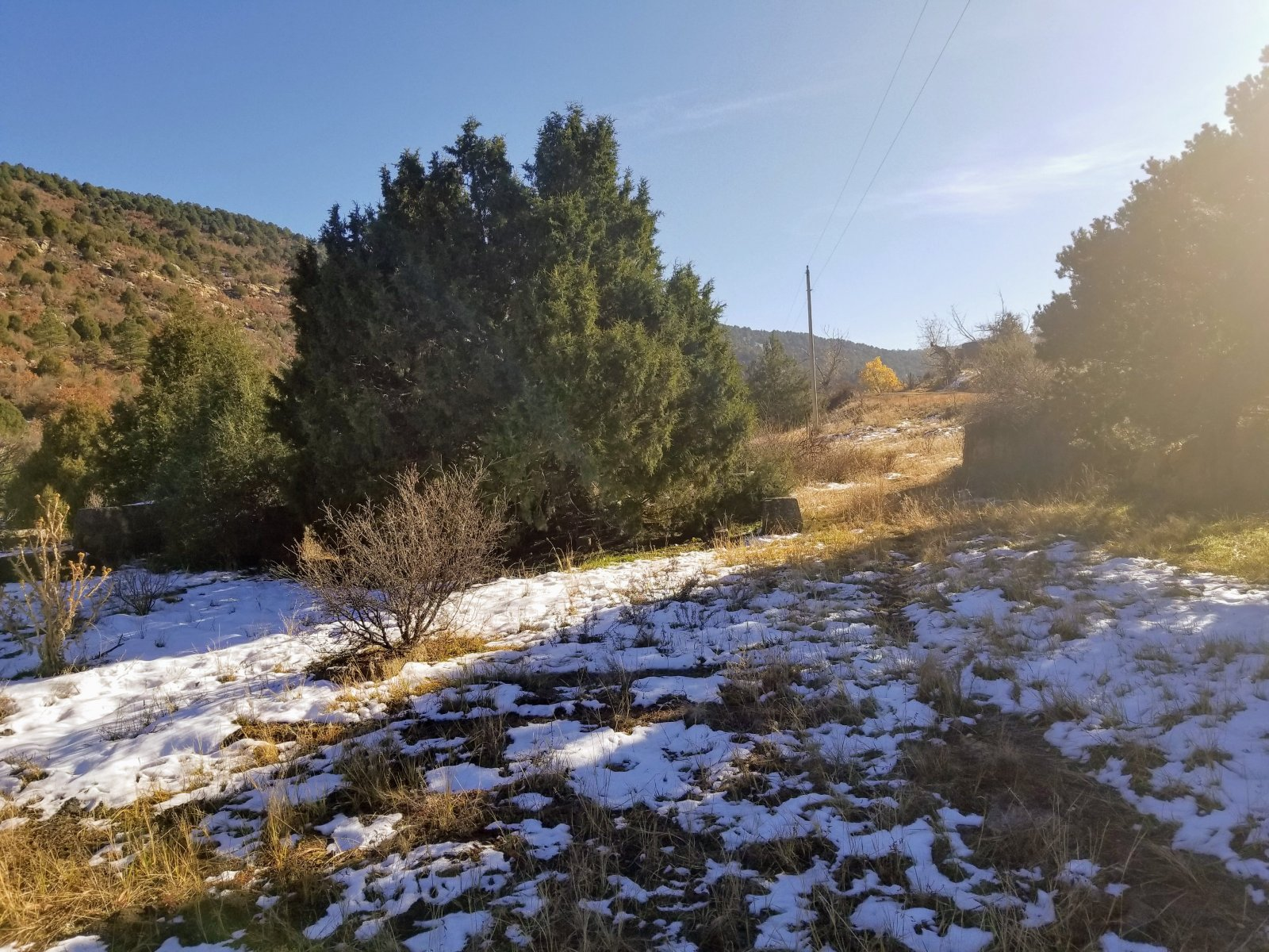 40 Wooded Acres West Of Trinidad Co Open Road Land