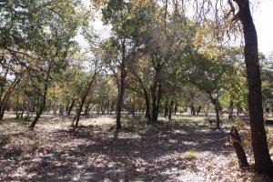 Floresville TX estates of eagle creek