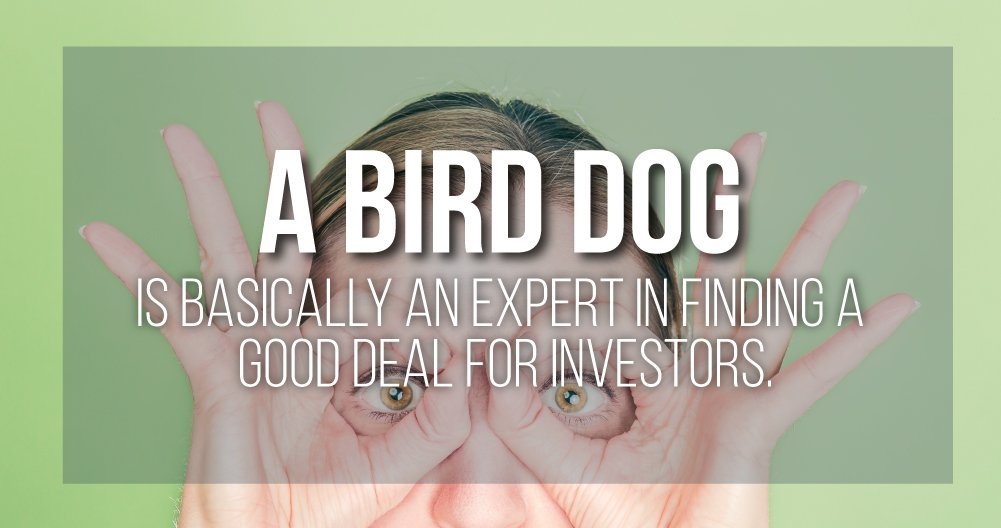 "What is a ""Bird Dog""?"