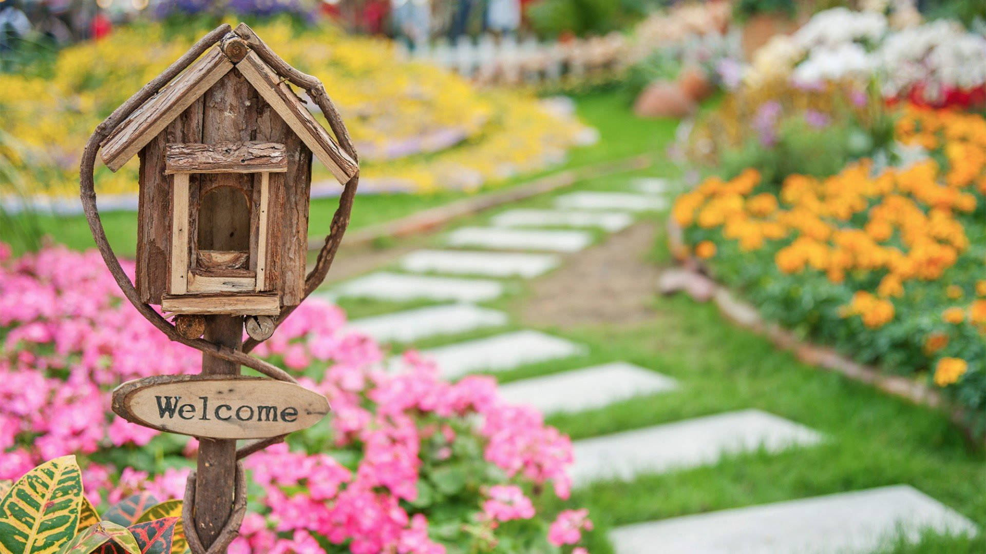 Simple Steps To Buying The Best Home