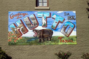 Texas Direct Home Buyers Hutto Mural