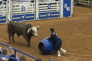 Austin Texas Direct Home Buyers Rodeo Austin Clown and Bull