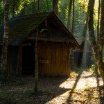 land investment | cabin in the woods