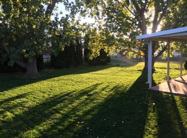 Backyard of a rent to own home in Clinton Utah