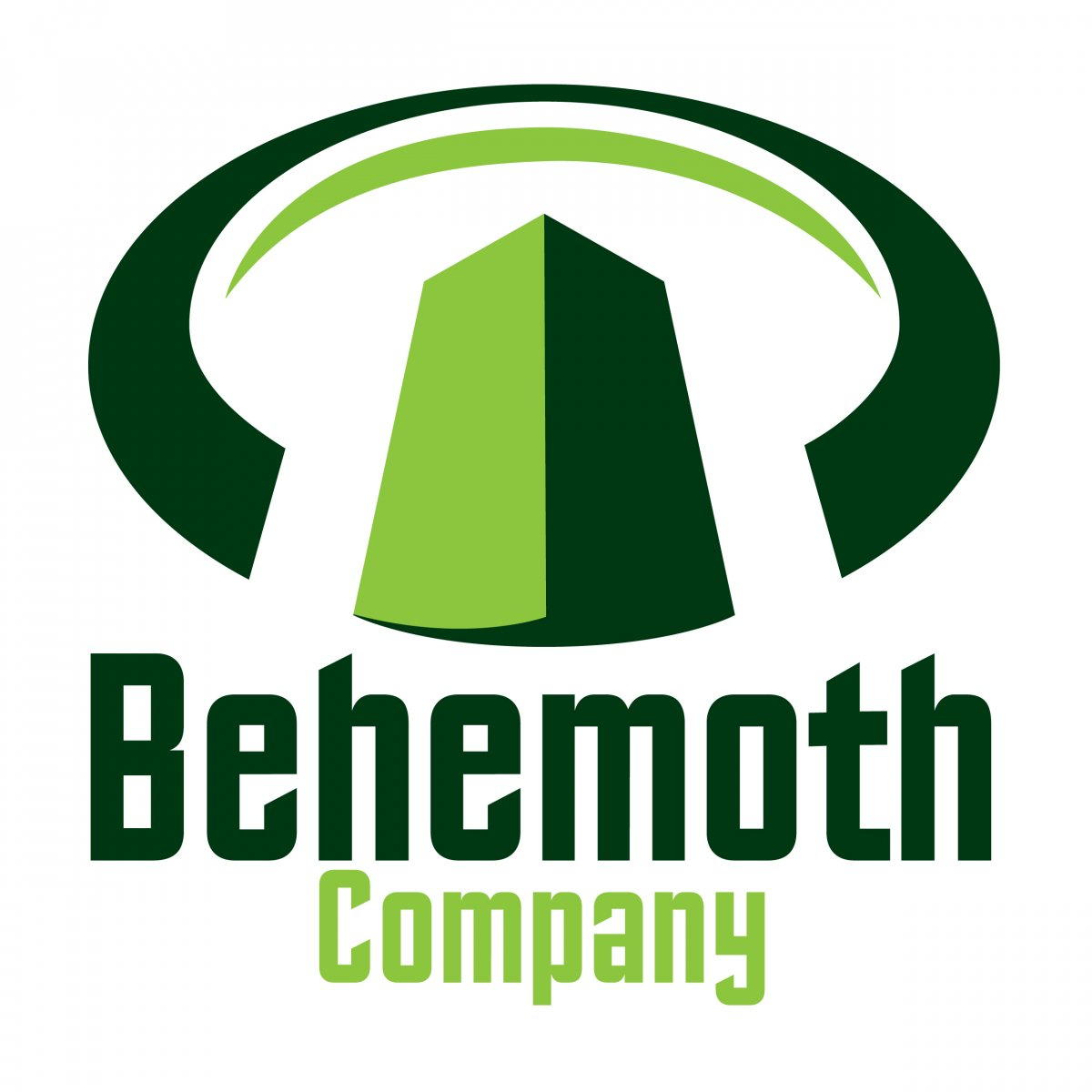 Behemoth Company Real Estate Brokerage logo