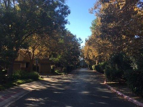 San Jose local real estate agent