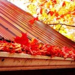 Home Maintenance Tasks You Should Complete this Fall | fall leaves in gutter