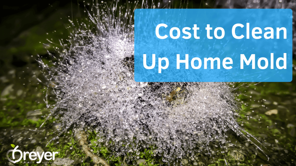 How to Sell a House with Mold Atlanta Marietta Norcross Sandy Springs Roswell Suwanee Lawrenceville Lithonia Stone Mountain Decatur GA Georgia