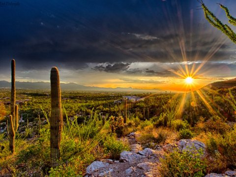 Discounted Arizona Land For Sale