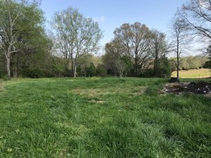 we buy vacant land tennessee