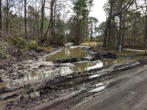 Land Poor logging mess left behind