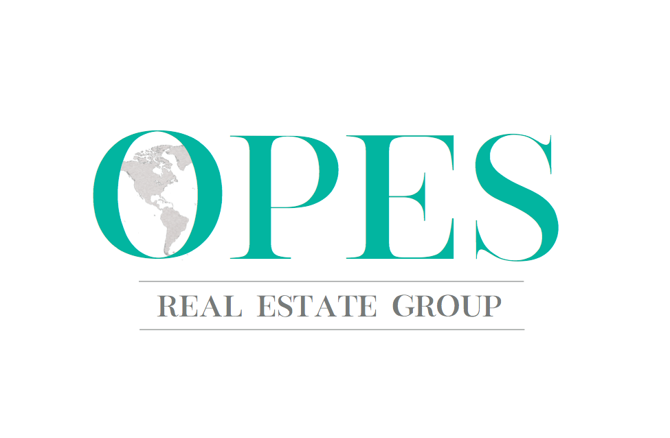 Opes Real Estate Group logo