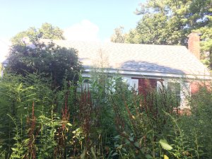 "Seller of this overgrown house may be thinking ""Who buys houses fast in Merrimac?"""