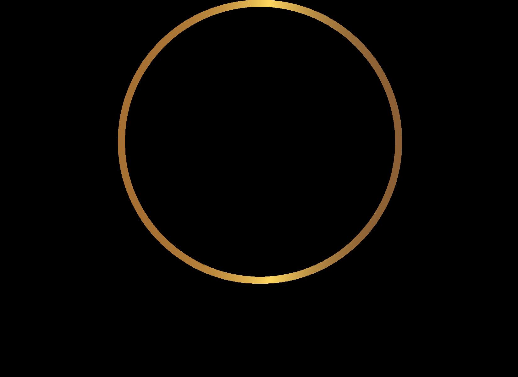 Ferocity Assets logo