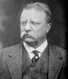Theodore_Roosevelt-Bain