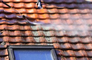 Roof Washing in Spring