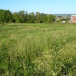 Reaping Profit From Vacant Land