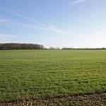 investing in vacant land