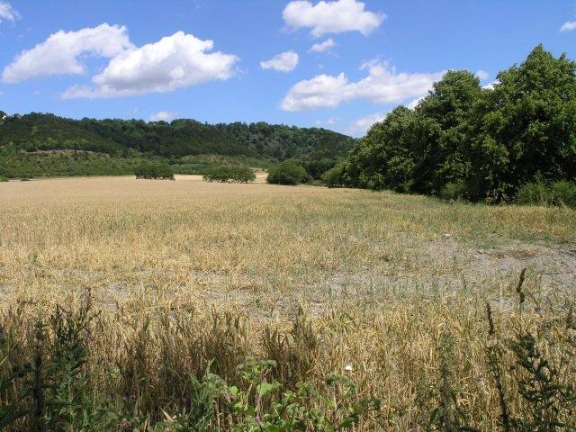 selling rural land
