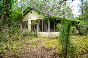 In the middle of an overgrown yard in south florida is an old abandoned yellow house.