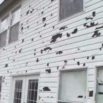 how to sell a home with hail damage in colorado
