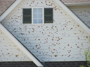 sell a house with hail damage colorado springs