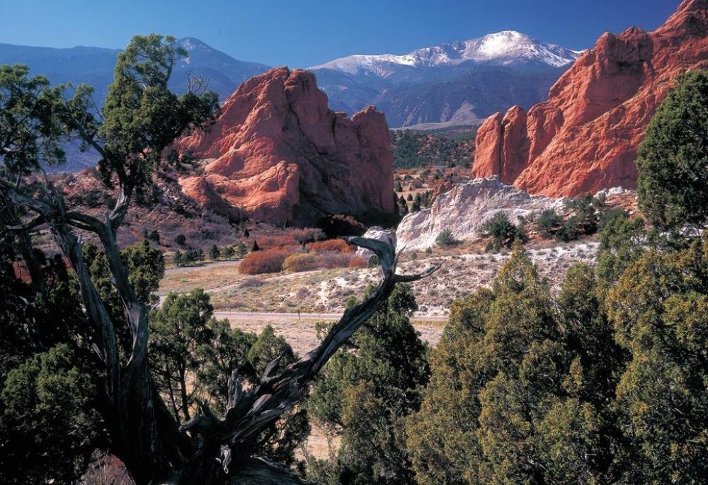 Colorado springs real estate market trends 2018 for Secret garden colorado springs