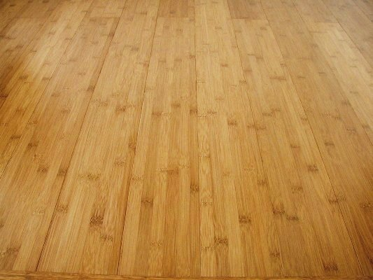 The appeal of bamboo flooring